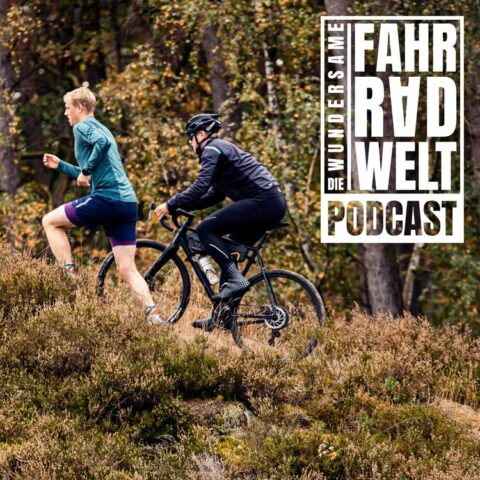 Triathlon vs Ultracycling mit Hannes und Lasse Popken vom Plattfuß Podcast